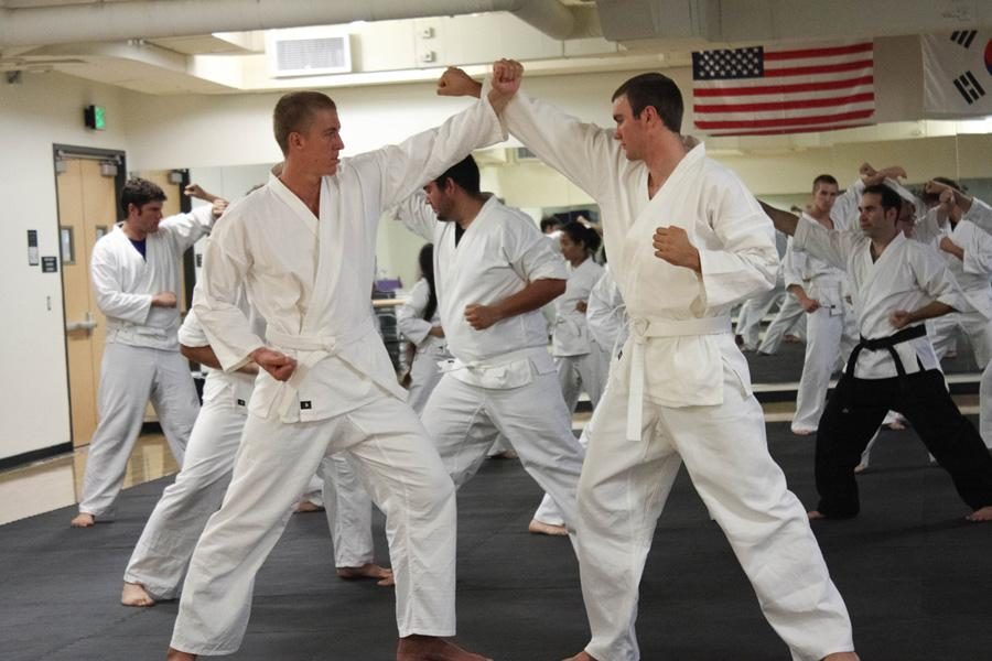 The Last Dragon: Senior Brendan Donohue, left, and partner work on their technique at the Tang Soo Do class. Instructed by assistant professor of psychology Seth Wagerman, the class helps students master their inner ninja. Photos by Sara Schmachtenberger - Staff Photographer