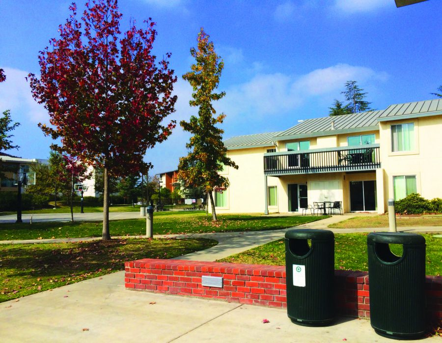 Clean up: The many trash and recycling cans located around campus make it easy for students to recycle and keep the campus clean.  Photo by: Isabella Del Mese - Photo Editor