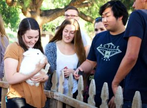 On April 15 students enjoyed themselves at the ASCLU Programs Board  event, We Bought a Zoo! Students were able to spend their Friday afternoon at CLU's very own petting zoo, located in Kingsmen Park. Photo by Kamehanaokala Lee - Staff Photographer