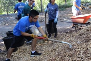Jordon shovels mulch into the wheelbarrows that other students would distribute onto the trail