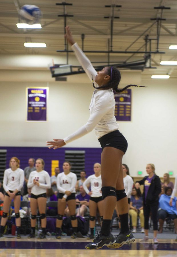Soaring above: Hope Stewart is seen flying high about to send the ball over the net for a kill.  Photo Credit--Eric Duchanin Staff Photographer