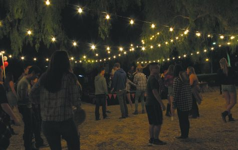 Line Dancing Under The Moonlight