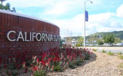CLU has been slowly introducing drought-resistant plants throughout the campus due to the little rainfall Southern California has received in the past few years. CLU has just planted drought-resistant plants in front of the sign along Mt. Clef Rd. and Olsen Rd.