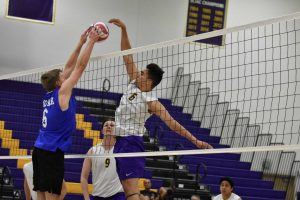 Sophomore Tony Moreno picked up a kill in Thursday game against Moorpark College. He will look to help  improve the team's record next season in their pursuit of an NCAA Tournament appearance. Photo by Aliyah Navarro- Photojournalist