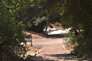 The entrance to the trail right before the campground that is under investigation. Photo by Francisco Atkinson - Photojournalist
