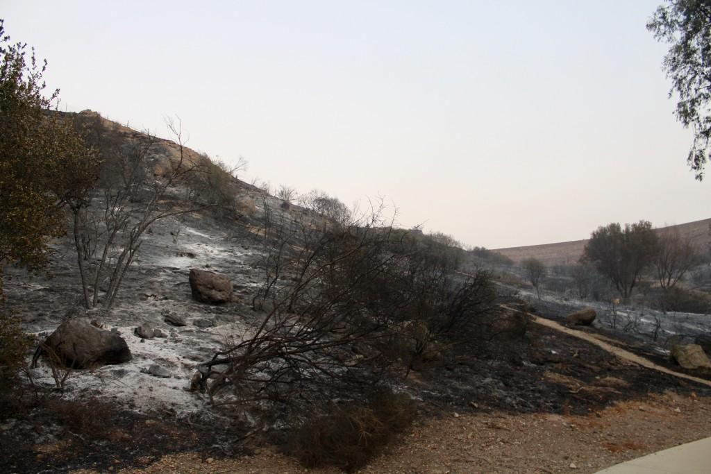 Burnt hillside above Three Springs Park in Westlake.  Photo by Brooke Stanley - Sports Editor