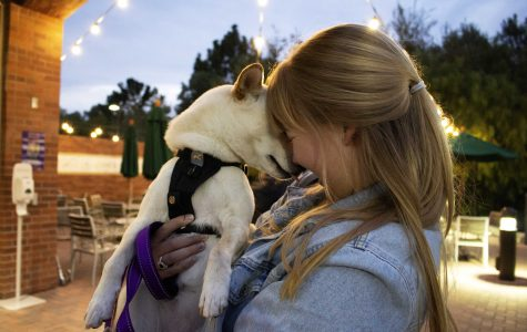 Dogs of Cal Lutheran Unleash Their Love