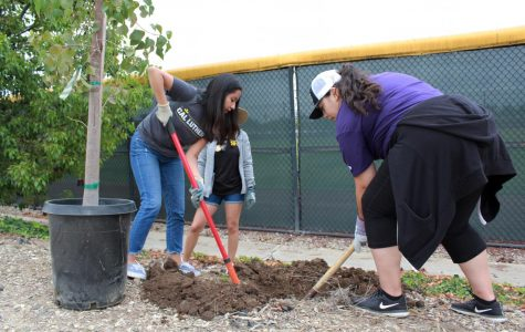 Cal Lutheran celebrates 30th annual Day of Caring