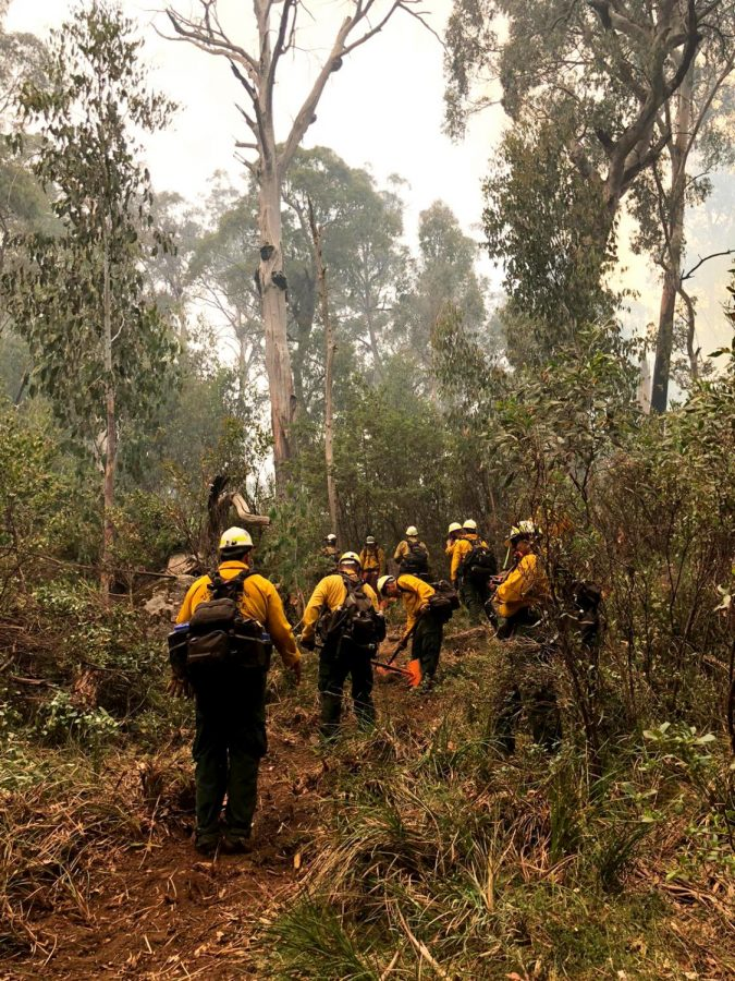 Assisting in Australia: Angeles National Forest Service firefighters were recruited to help fight wildfire in Australia.