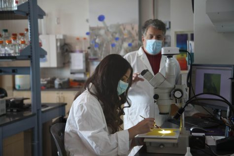Biology professor David Marcey and Emily Jabourian conduct research in a Cal Lutheran lab.