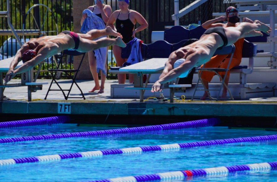 Kingsmen swimmer, Nick Kenny gets off the block to start the race against University of Redlands Bulldogs on Saturday March 13.